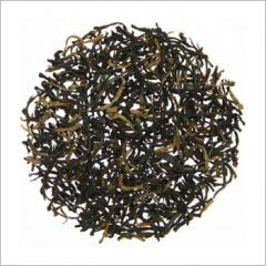 Quality Nilgiri Tea