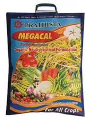 Prathista Megacal