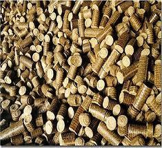 Biocoal briquettes
