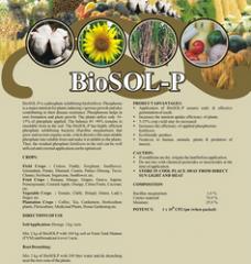 BioSOL–P Biofertilizer