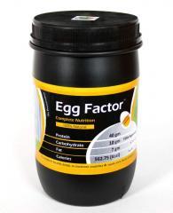 Egg Protein Powder - Egg Factor