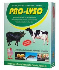 Pro Lyso