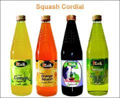 Squash / Cordial