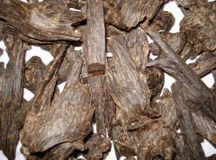 Agar Oil (Aquilaria Agallach)