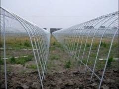 Green House Plastic Tunnel