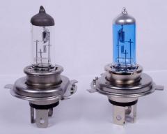 Halogens Bulbs