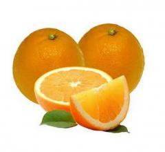 Fresh Preserved Orange