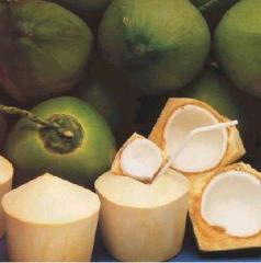 Нежная кокосовая вода