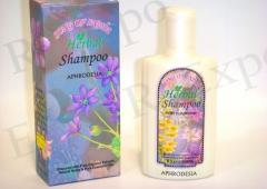 Song of India Herbal Perfumed Shampoo in Bottles