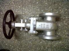 C.R.I. Make Gate valve