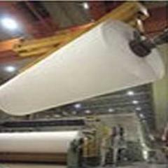 Papermaking Chemicals
