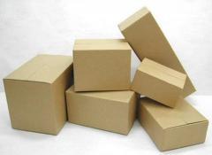 Corrugated Paper Carton