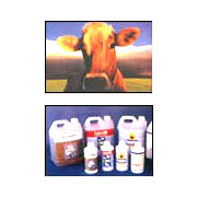 Veterinary Products & Supplements