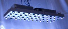 Reef LED Lights.
