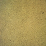 CASSIA TORA MEAL