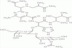 Bleomycin Vial