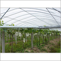 Non-Woven Fabric for Agriculture Crop Covers