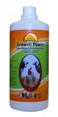 Most Powerful Multi Vitamins Combination for Livestock