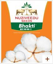 BT Cotton Seeds