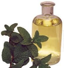 Menthol Oil