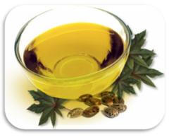 Refined Castor Oil First Special Grade - F.S.G