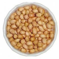 Peanut (JAVA)