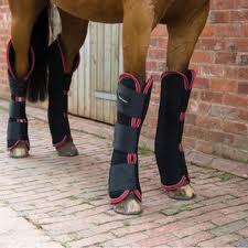 נעלי רכיבה על סוסים
