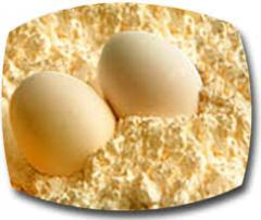 Dehydrated Egg Powder