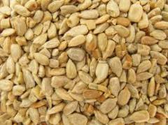 Hulled Sunflower Seed Kernels