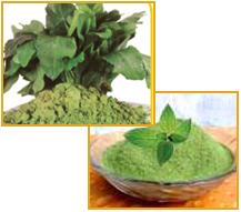 Fresh Vegetable Powder