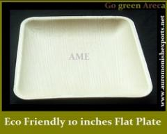 Eco Friendly Square 10 Inches Flat Plate