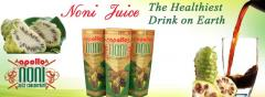 Noni Juice | Apollo Noni | Noni Juice India | Noni