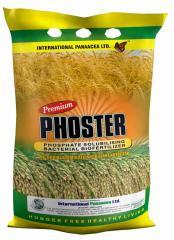 Premium Phoster
