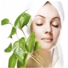 Herbal Care Cosmetics
