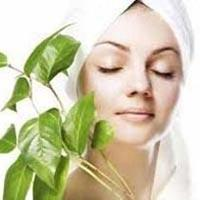 Organic Beauty and Personal Care Products