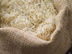 Long grain rice /  Basmati rice  / Non- Basmati