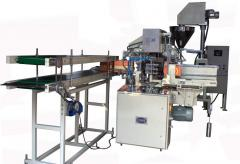 Mono carton packing machine for detergent