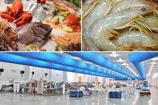 Fishery & Aquaculture