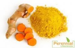 Curcumin Turmeric Extract / Curcumin 95%