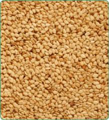 Natural Sesame Seed 98/2/2