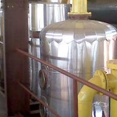 Castor Oil Derivatives Plant