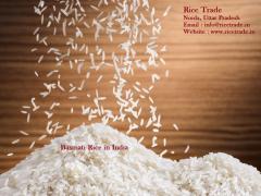 Basmati Rice Exporter in India, Rice Mills in