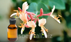 Honeysuckle Attar