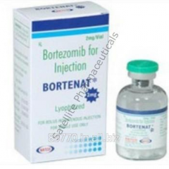 Bortenat – Velcade (Bortezomib)