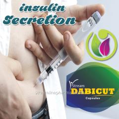 Insulin Secretion Medicine
