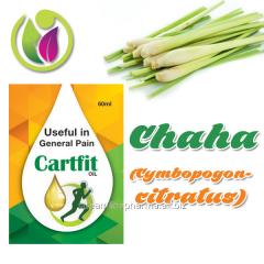 Chaha (Cymbopogon citratus)