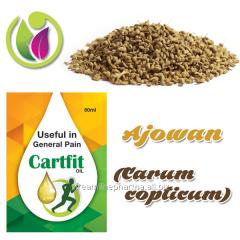 Ajowan (Carum copticum)