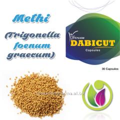Methi  (Trigonella foenum graecum)