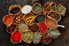 All Kind Of Plant Seed,Plant Extract,Dried Flowers
