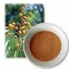 Aritha Herbal Powder